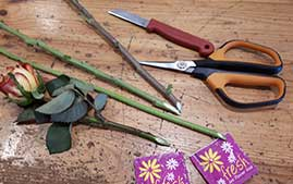 Consejos para el mantenimiento de la flor cortada